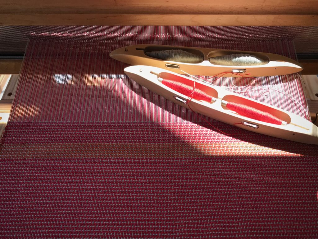 Weaving in the afternoon shadows.
