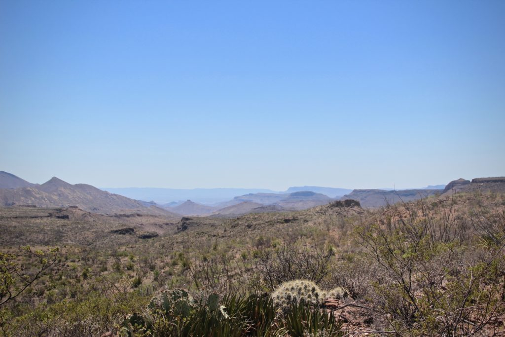 Fresno Canyon in Big Bend State Park, Texas.